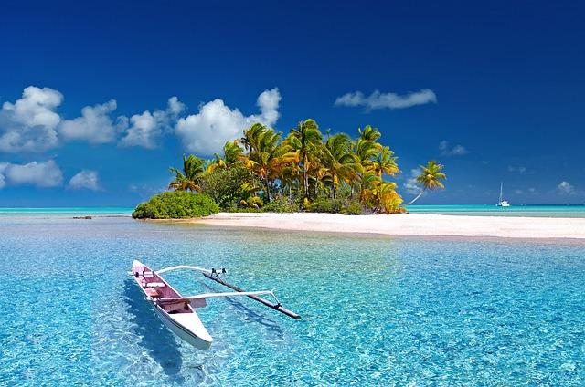 自動車保険 夏の海
