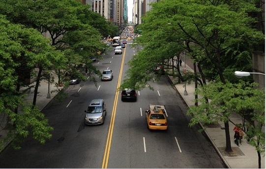 自動ブレーキ 道路