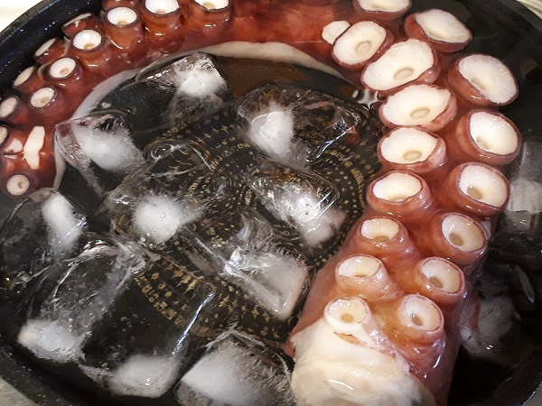 タコ氷水に入れる