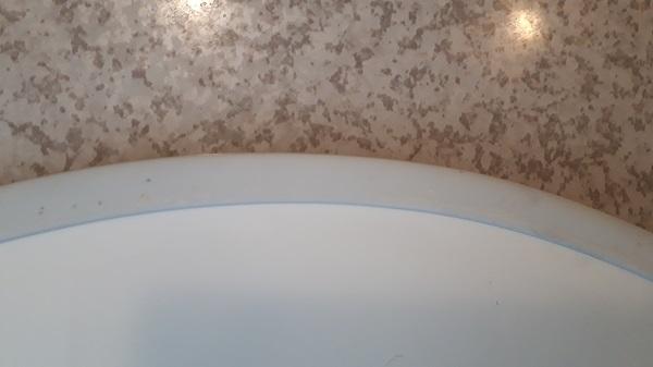 黒カビ退治後の風呂の蓋